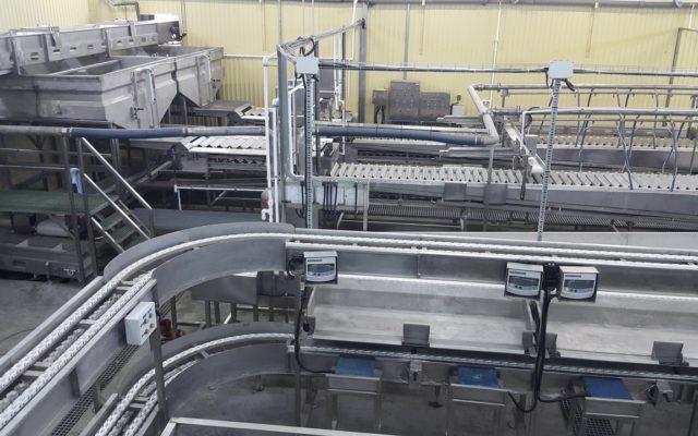 Сдан завод по переработке рыбы